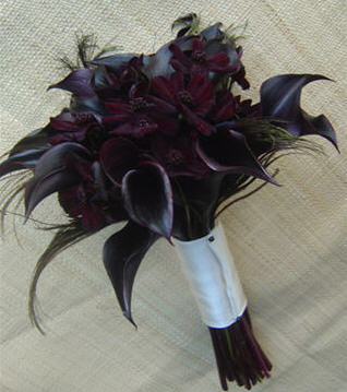Black flowers make a dramatic statement!