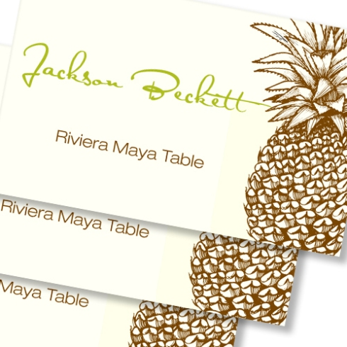pineapple-place-card_large